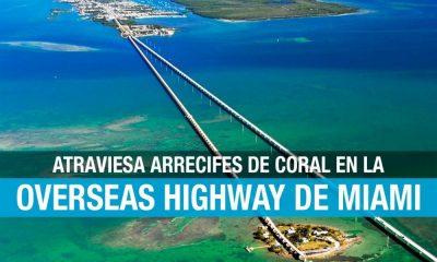Qué hacer en Overseas Highway, Florida