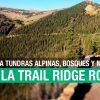 Trail Ridge Road, Colorado: a la altura de las montañas