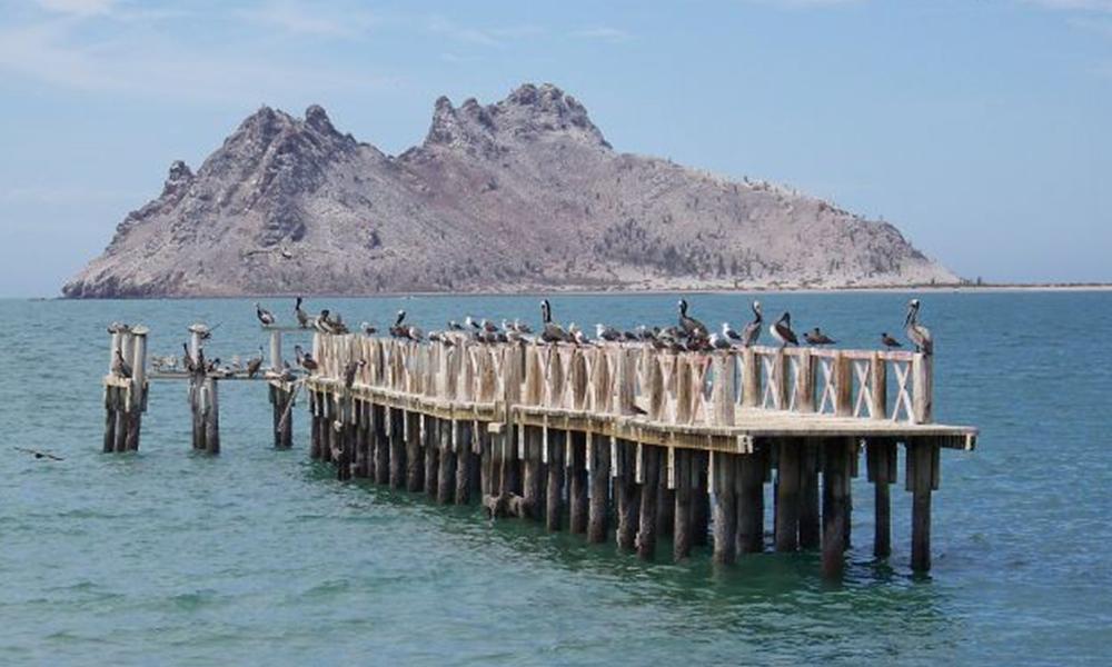 Qué hacer y dónde ir en Bahía de Kino, Sonora México
