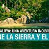 """Mismaloya: el pueblo de Depredador y """"El Edén"""""""