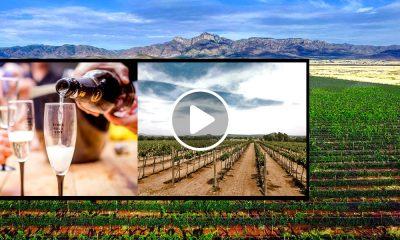 10 destinos mexicanos para amantes del vino