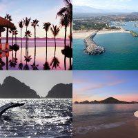 10 imperdibles para primerizos en Los Cabos