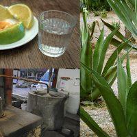 ¡Mezcalerías de Oaxaca que deberías visitar con los cuates!