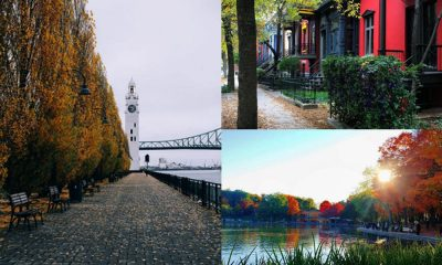 Mejores cosas que hacer en Montreal