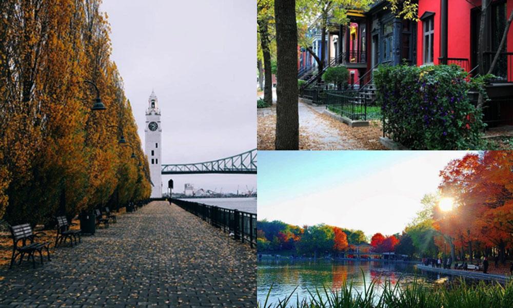 Conoce Montreal, Canadá a través de estos 10 imperdibles