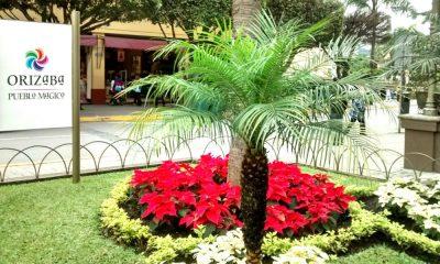 Escápate de la oficina y ve a Orizaba, Veracruz