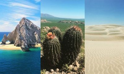 Top Ten imperdibles de Baja California Sur
