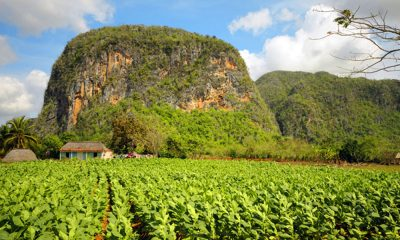 Pinar del Río: la provincia más surreal de Cuba que debes visitar