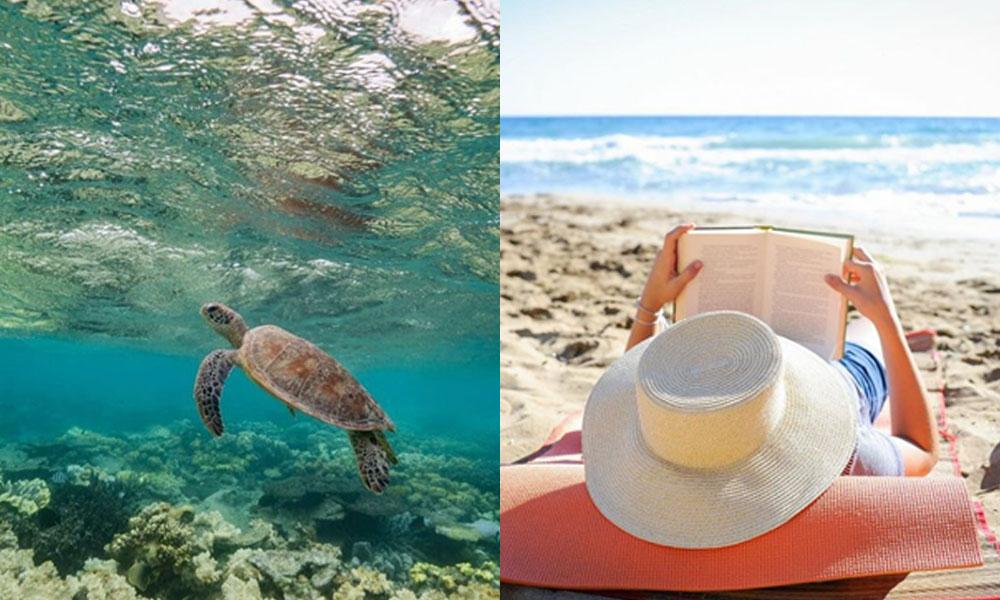 ¿Tienes 6 meses para disfrutar de la vida y vivir en Cancún?