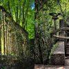 Sumérgete en el surrealismo del jardín de Edward James en Xilitla
