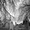 Silver Cliff, el cementerio que pone los pelos de punta en Colorado