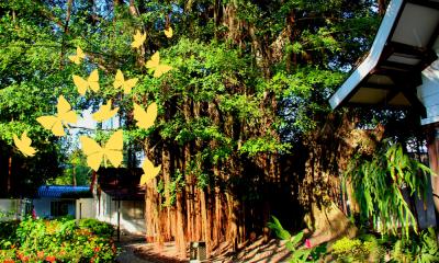 Aracataca y Riohacha: el Macondo de García Marquez