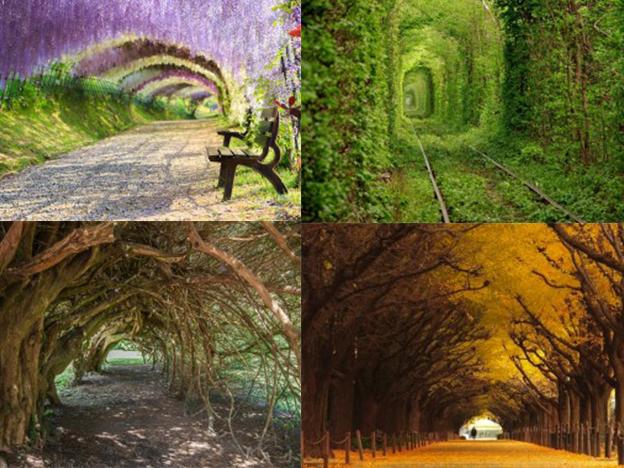 mejores-tuneles-romanticos-del-mundo