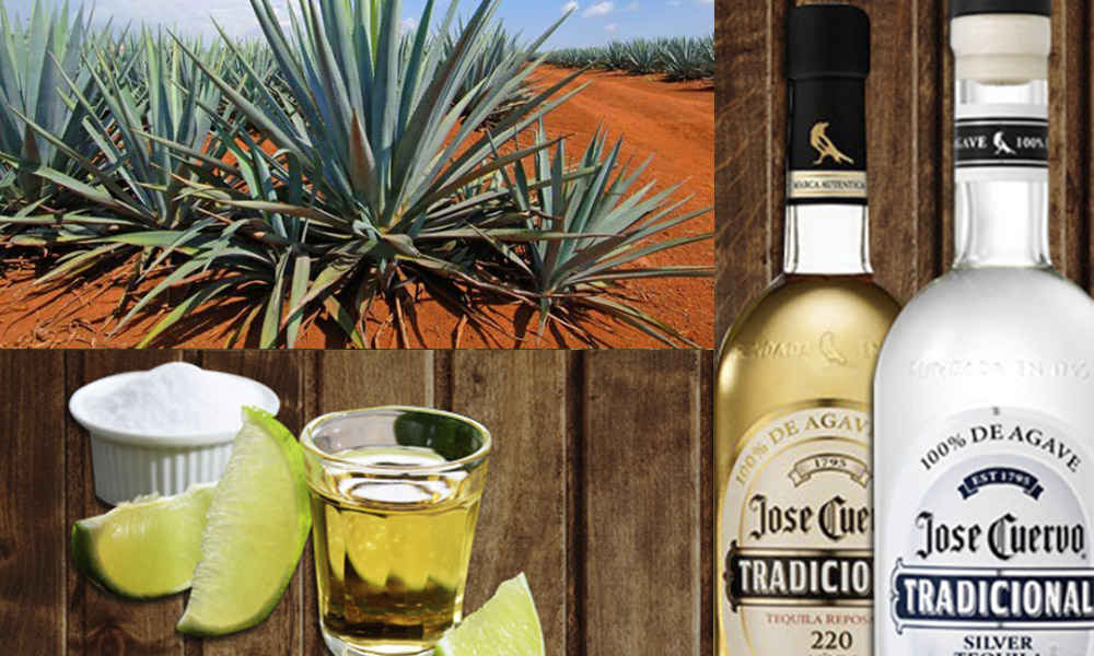 """Manual de Carreño"" para tomar tequila como se debe"