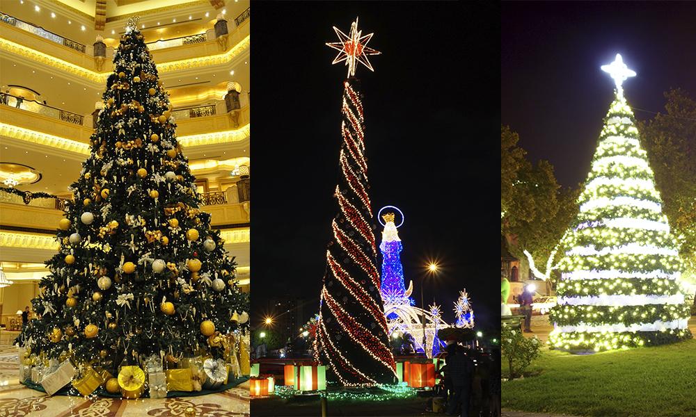 ¿Dónde comprar Árboles de Navidad naturales cerca de la CDMX?