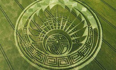 El misterio de los círculos en los campos de trigo, ¡sorprendente!