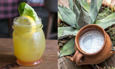 El mezcal, el tequila y el pulque, tres bebidas mexicanas por excelencia