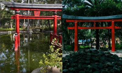Parque Masayoshi Ohira: conoce un espacio de Japón en la CdMx