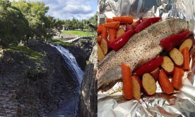 Truchas de Huasca de Ocampo: conoce dónde comerlas