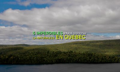 naturaleza-quebec-provincia