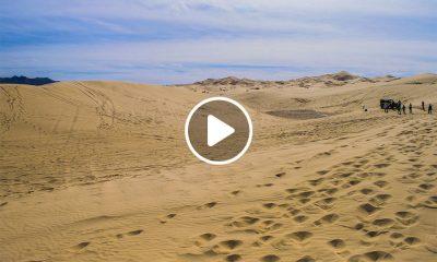 Qué ver en las Dunas de Samalayuca en Chihuahua