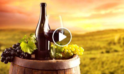 destinos para los amantes del vino