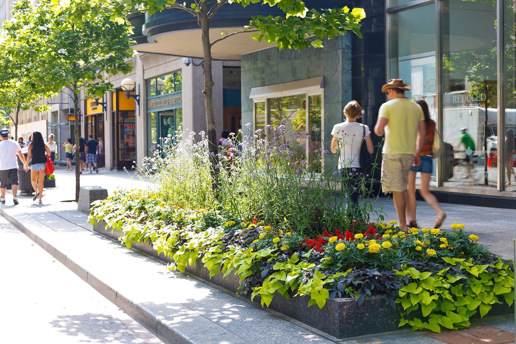 Dónde ir de compras en Toronto Bloor Yorkville