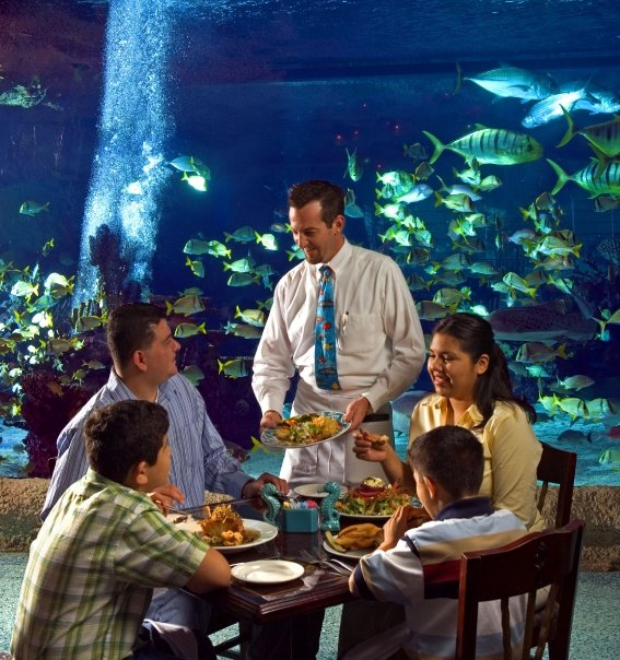 Los restaurantes bajo el mar Downtown Aquarium - Houston