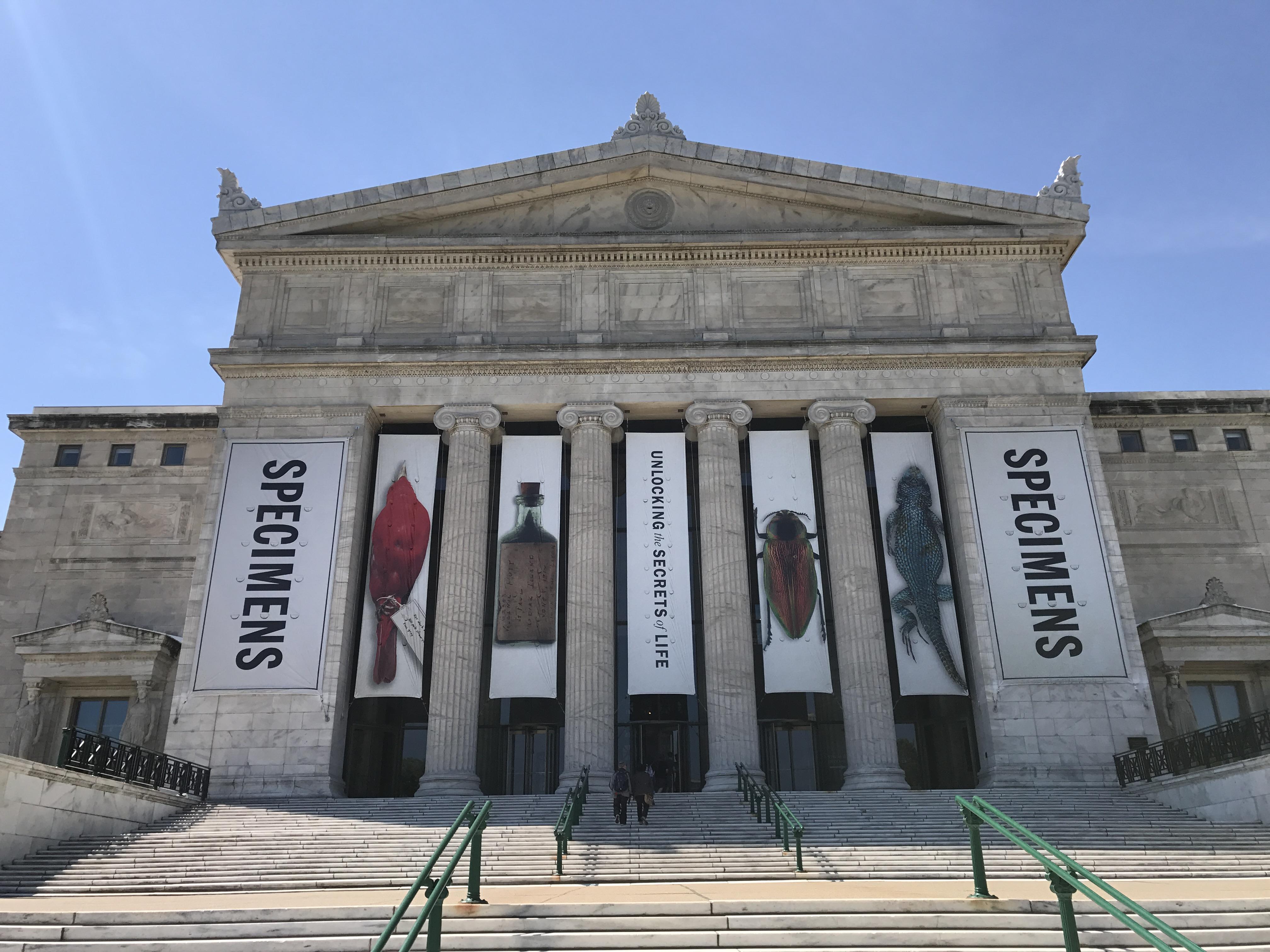 Qué hacer y qué visitar en Chicago museos
