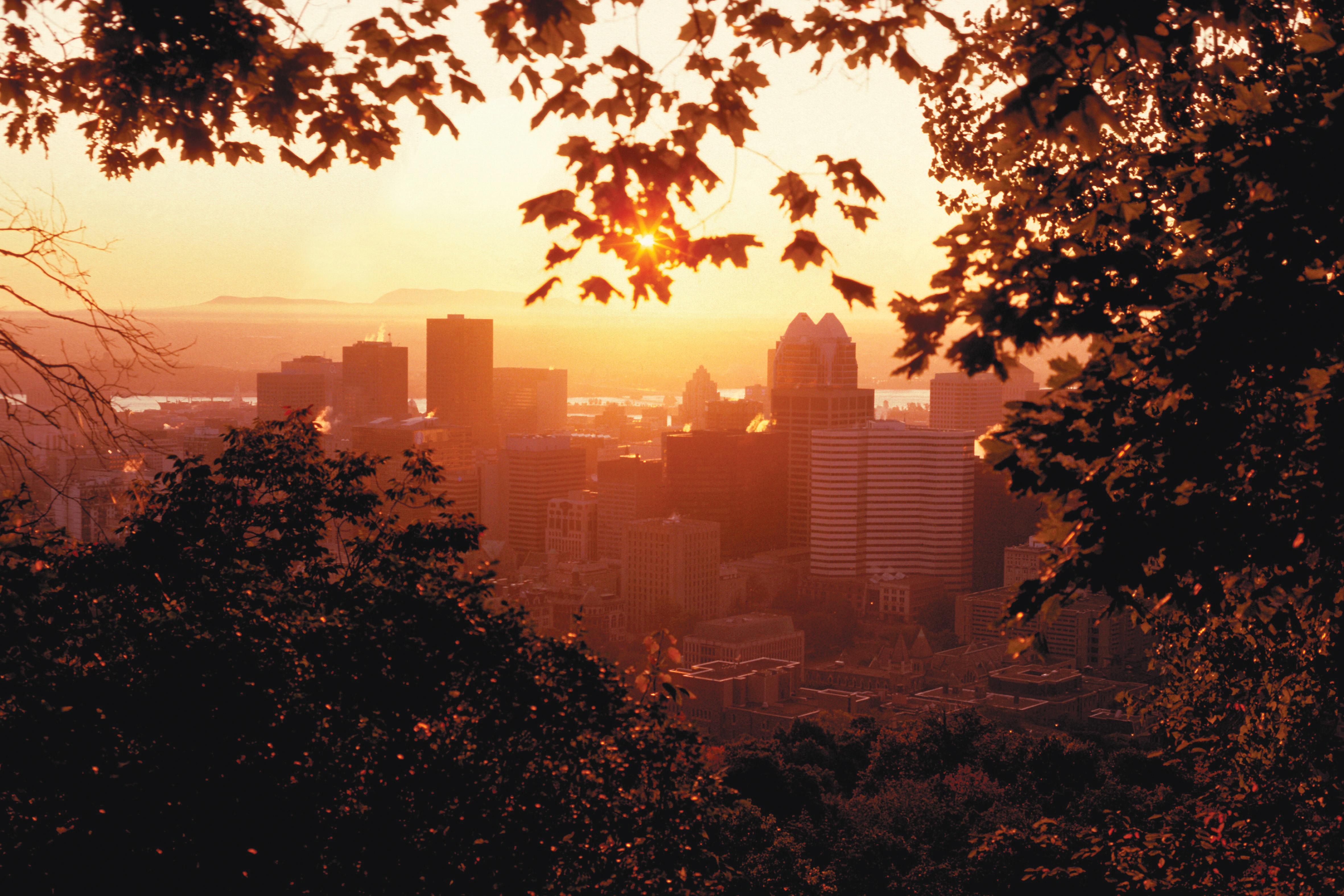 Qué ver en Montreal, modernidad o naturaleza skyline