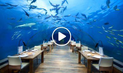 Restaurantes-bajo-el-mar-1
