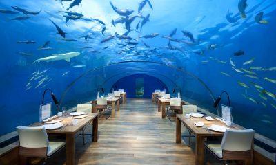 Restaurantes bajo el mar Ithaa Undersea Restaurant
