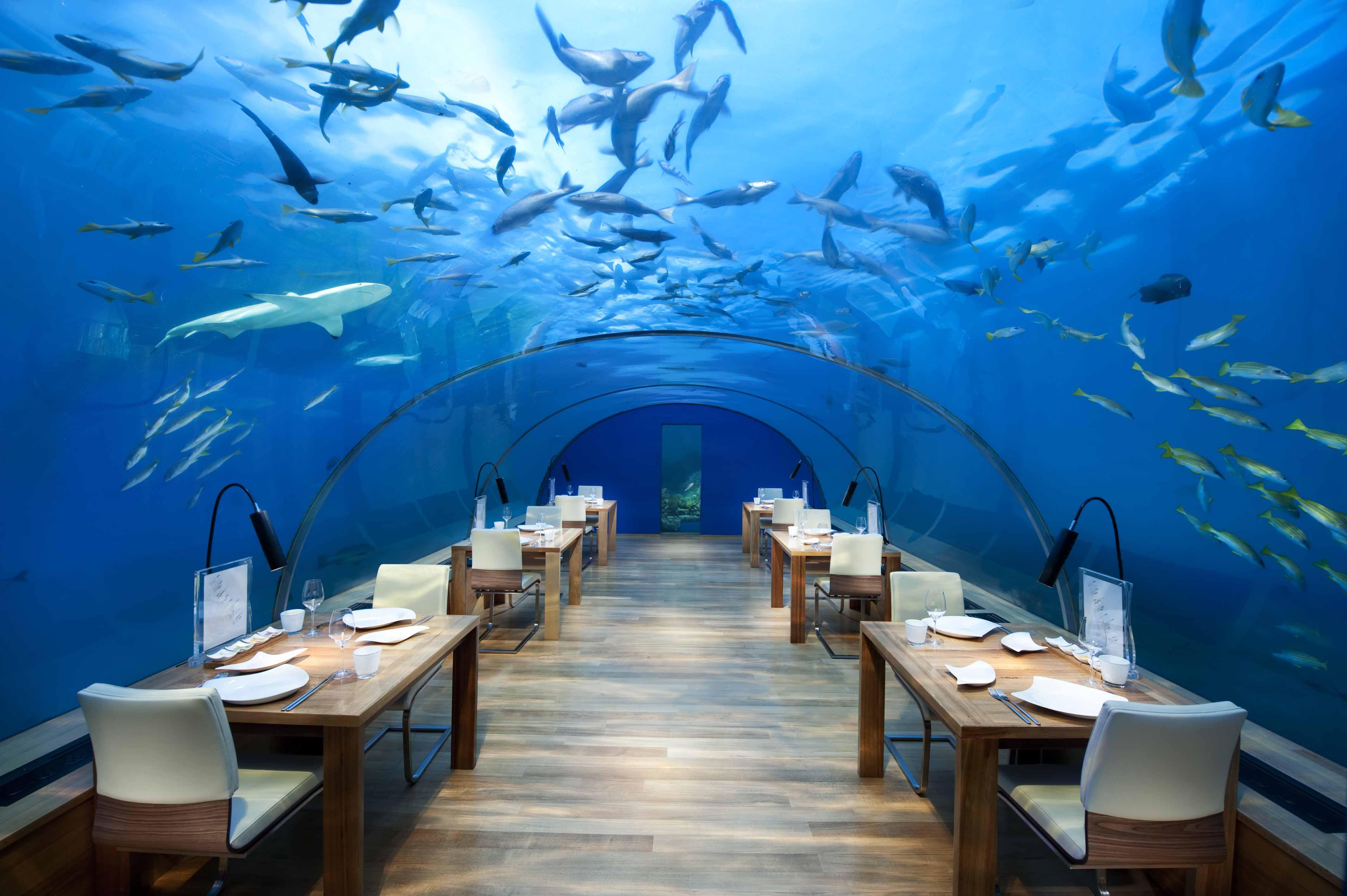 Restaurantes bajo el mar IthaaUnderseaRestaurant2