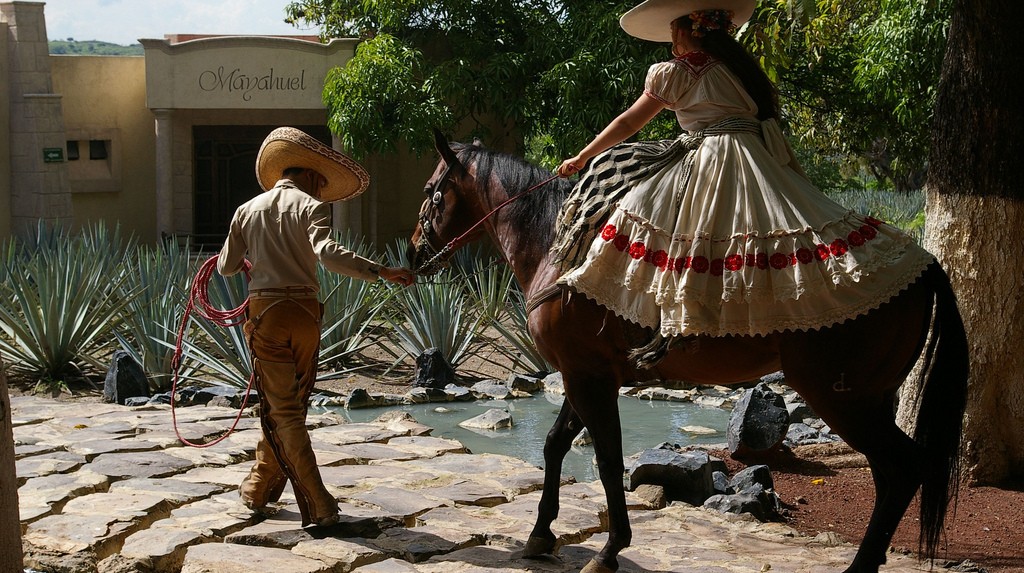 Rutas gastronómicas de México, tequila