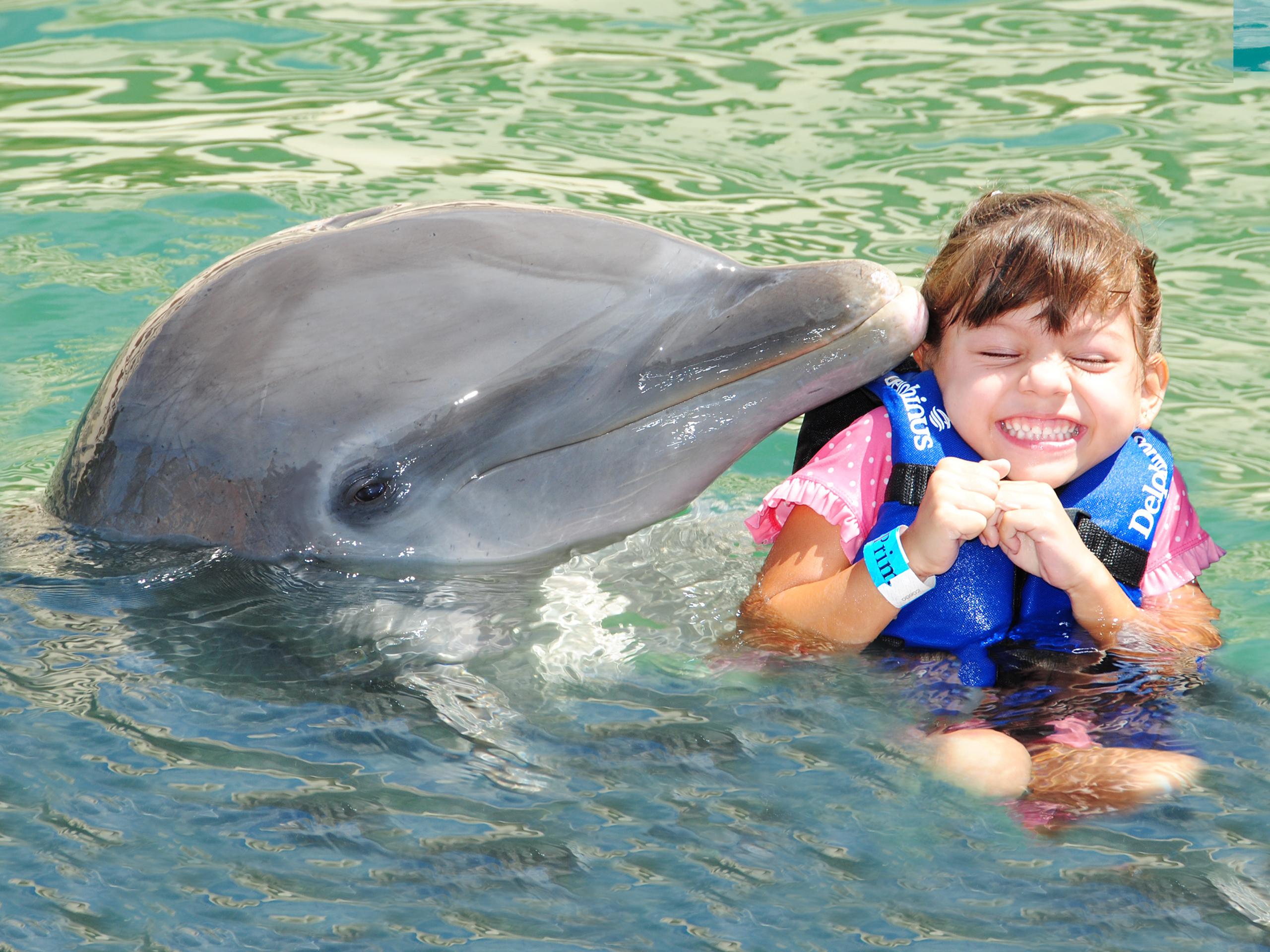 Xcaret, tradición y naturaleza show nado-delfines