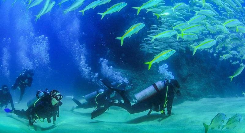 Las mejores cosas que hacer en Los Cabos