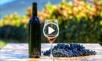 destinos-vinicolas-1