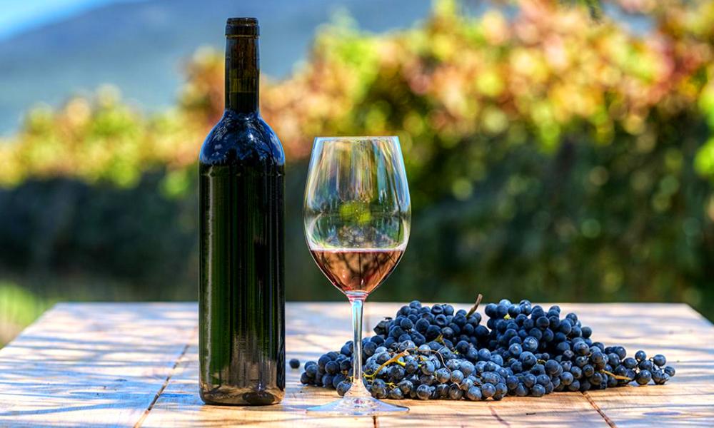 destinos-vinicolas