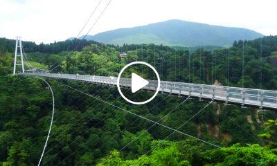 puentes colgantes 1