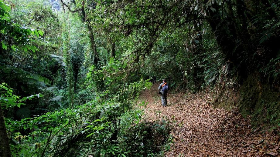 Chiapas es el destino más mágico del mundo