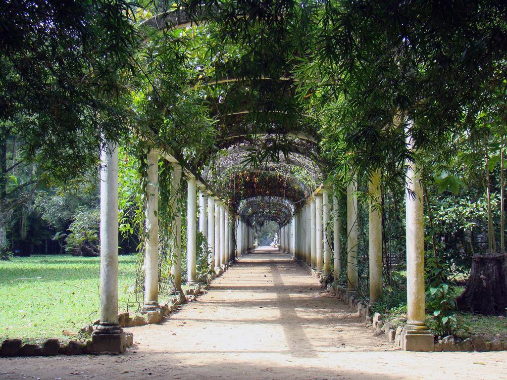 Los jardines más bellos del mundo Jardin Botanico Rio de Janeiro