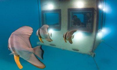 Los mejores hoteles bajo el agua del mundo (1)