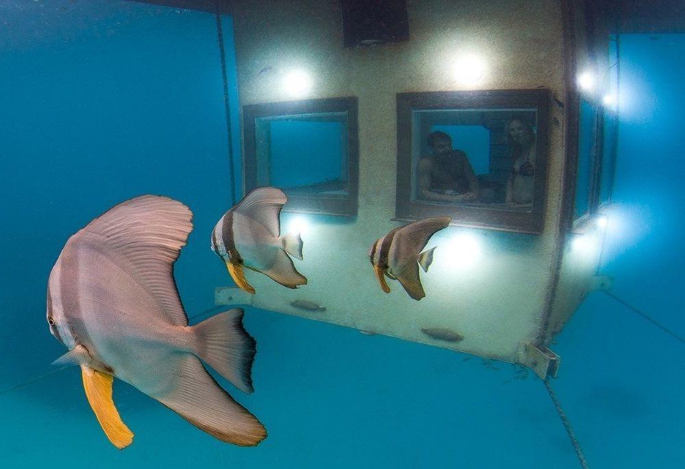 Los mejores hoteles bajo el agua del mundo