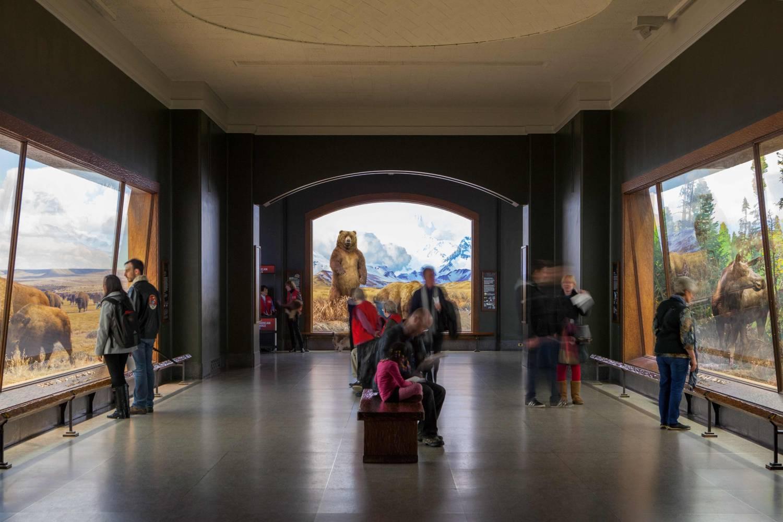 Los mejores museos de historia natural del mundo american-museum-of-natural-history