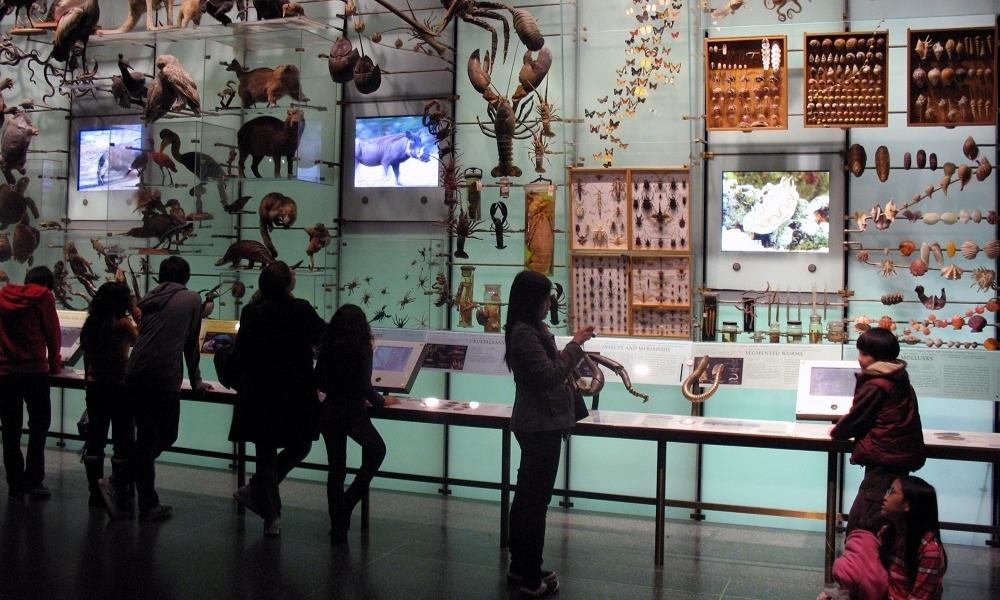 Los mejores museos de historia natural del mundo