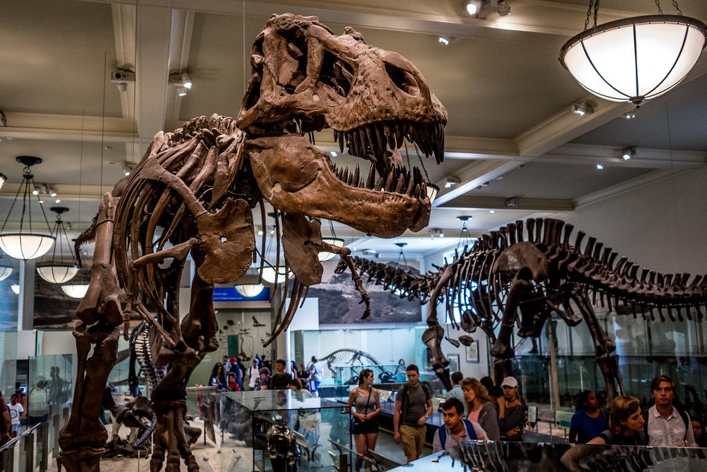 Los mejores museos en Nueva York