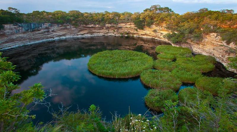 Reserva de la Biosfera El Cielo, edén tamaulipeco