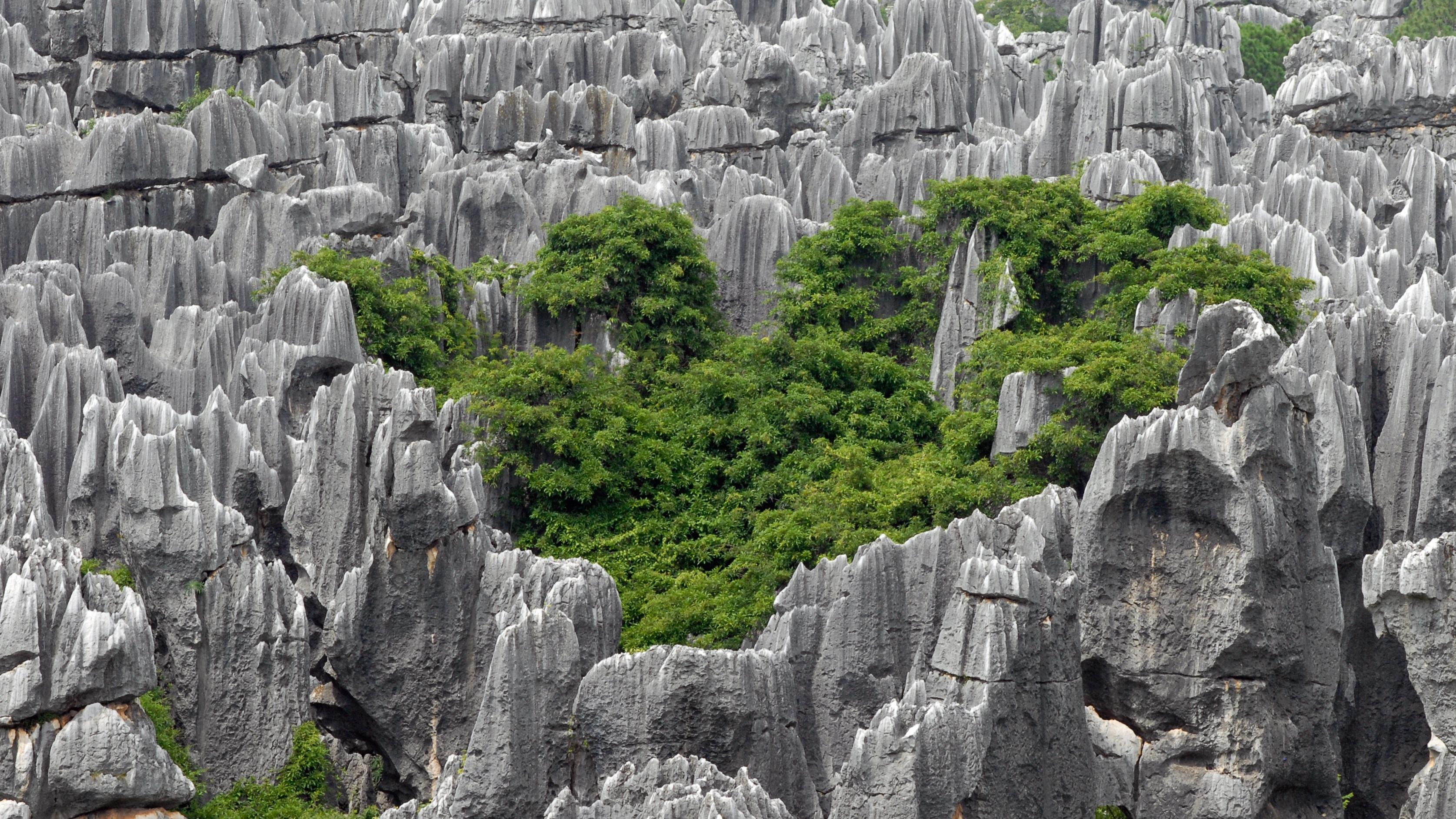 Sorprendentes Paisajes Petrificadas Bosque de piedra de Shilin