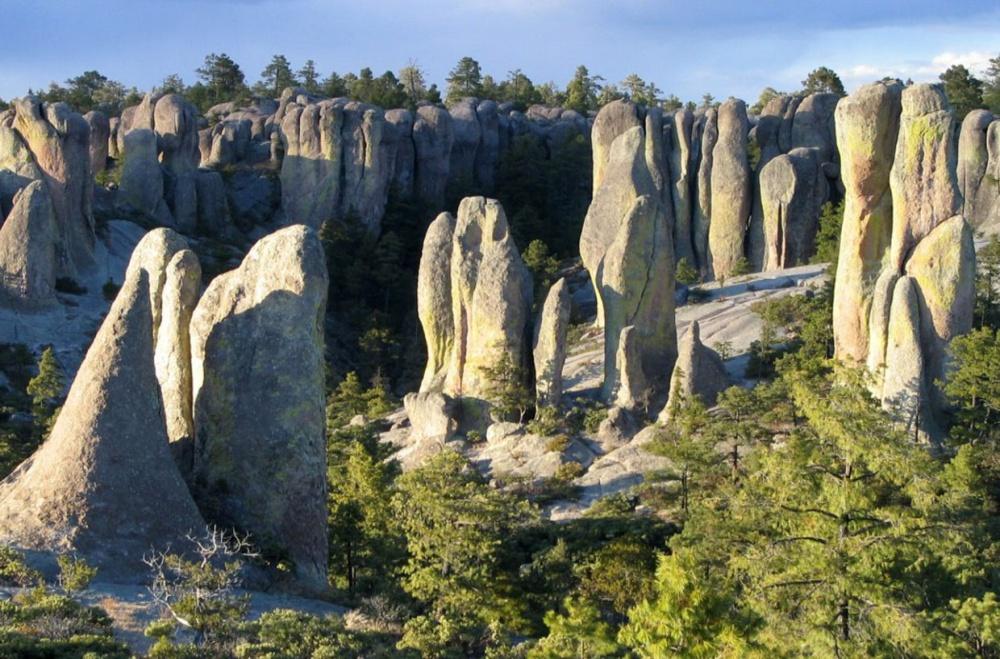 Sorprendentes paisajes petrificados
