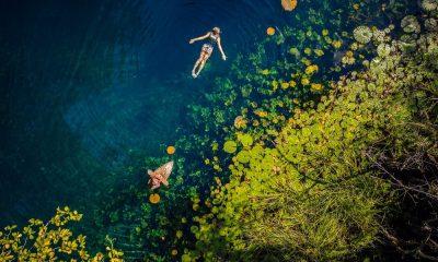 Un cenote para cada tipo de viajero